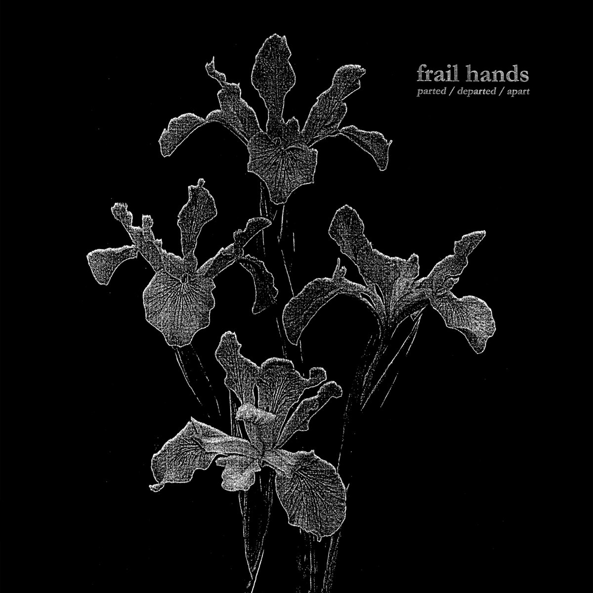 FRAIL HANDS cover