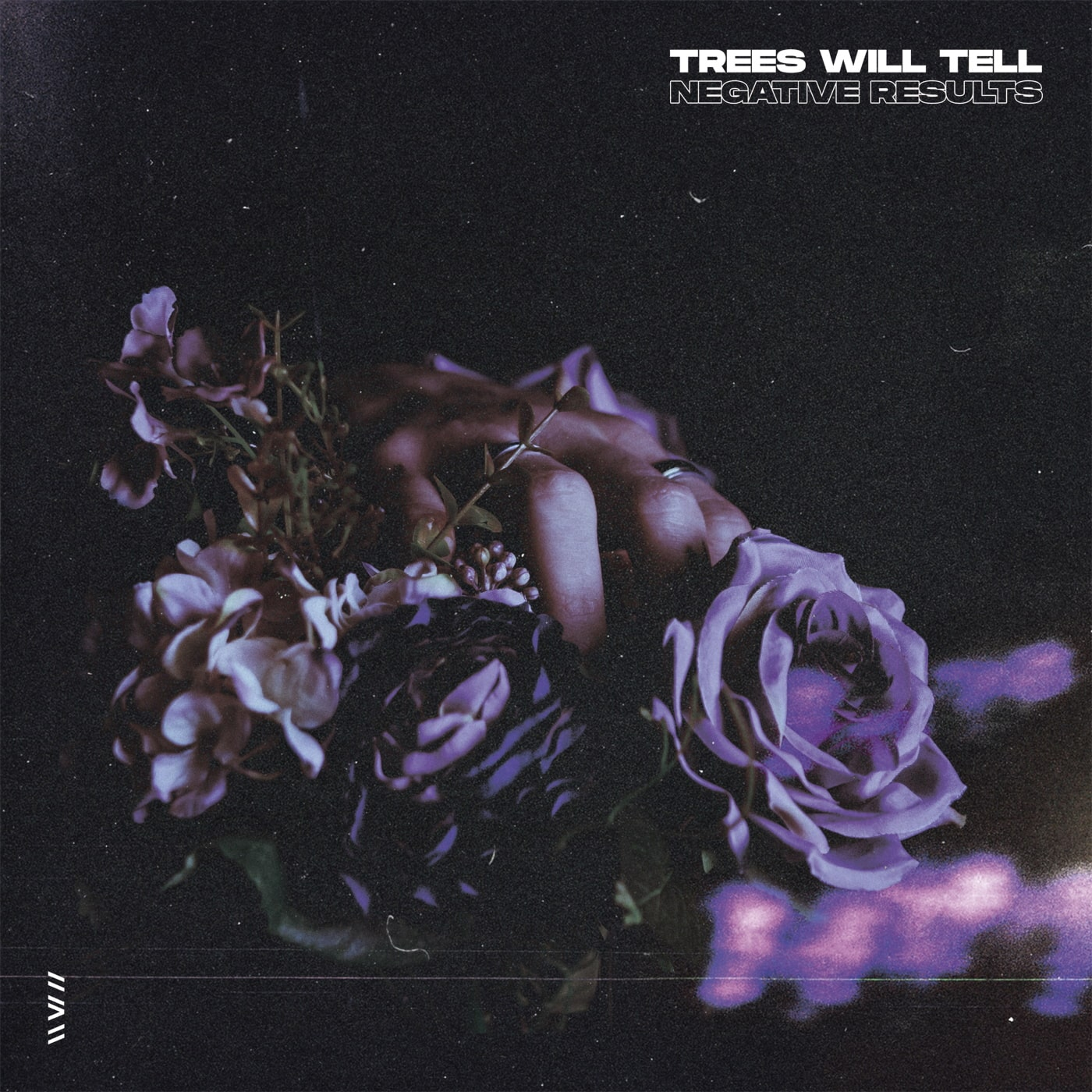 TREES WILL TELL cover